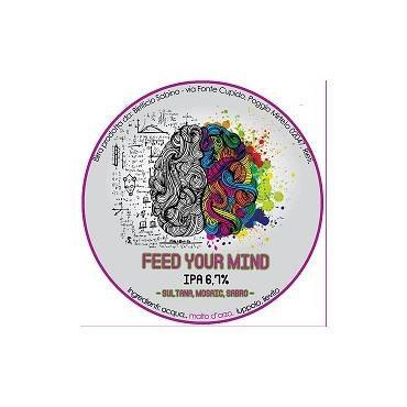 FEED YOUR MIND IPA 6.7° 30 LT POLYKEG