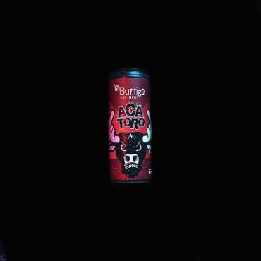 ACA TORO PUNKREAS PALE ALE 4.9° 33 CL LATTINA
