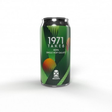 1971 TAKE 8 DDH NEIPA 7.2° 40 CL LATTINA